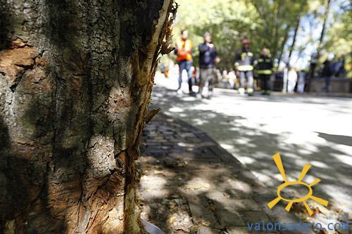 094-RallySansa-2011