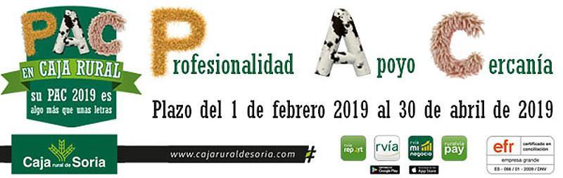 Campeonato CES 2019