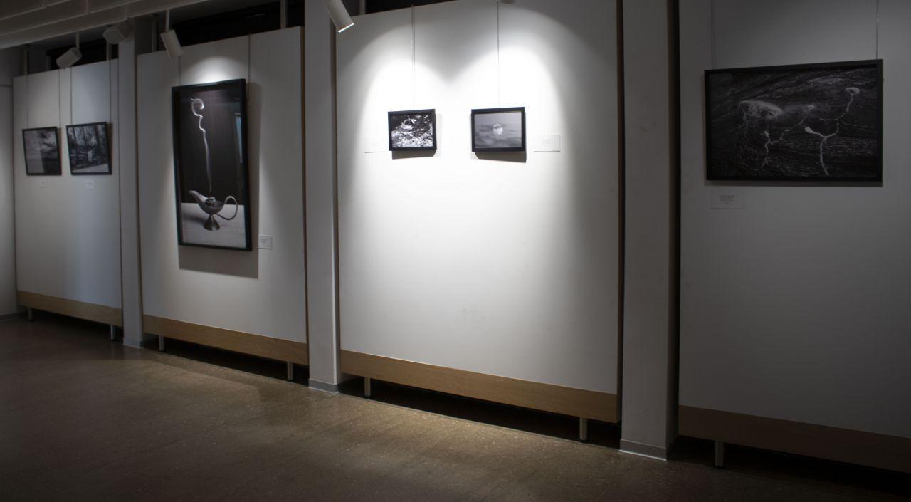 Exposición Llanto en la Hoja Seca
