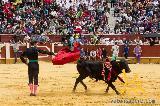 254-Viernesdetorosmañana2017