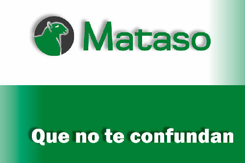 362-Mataso