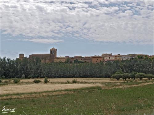 monteagu