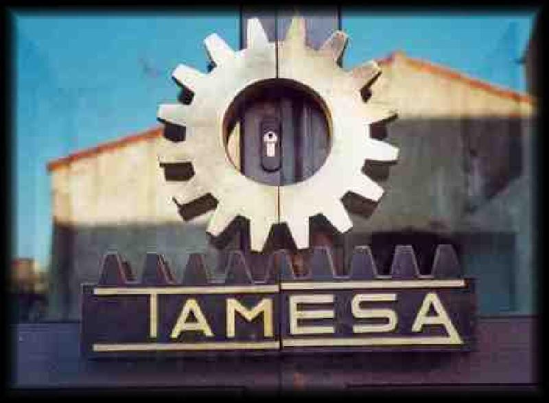 tamesa0