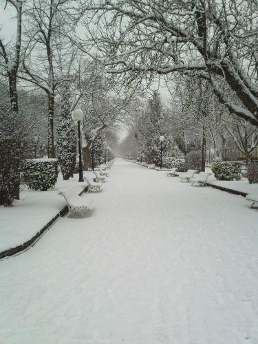 Paseo en Invierno