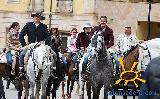 071-Romeria-FeriaAbril-2015-