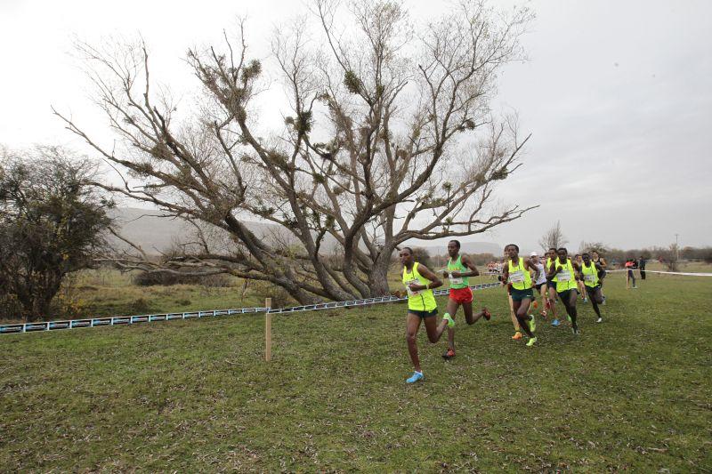 El Campo a través de Soria mantiene la categoría europea